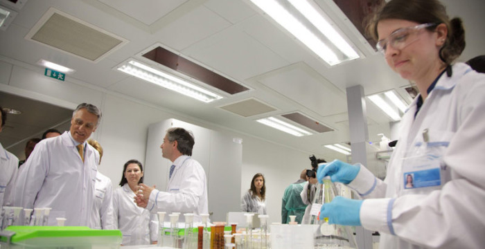 Bluepharma desenvolve medicamento para a Covid-19 e pretende recrutar 100 pessoas
