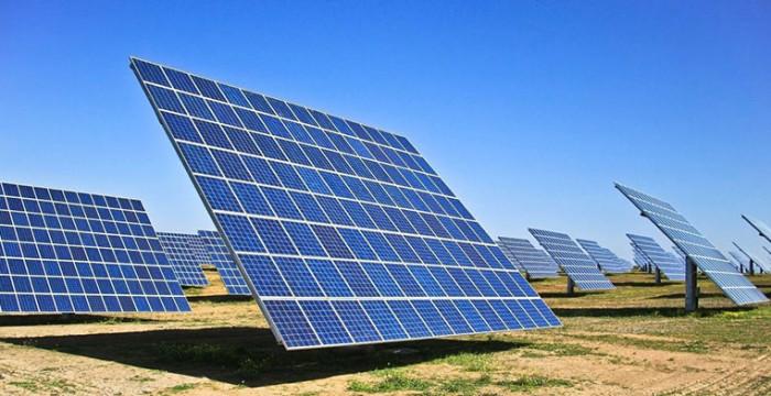 Estremoz: quatro novas centrais fotovoltaicas trazem dezenas de empregos